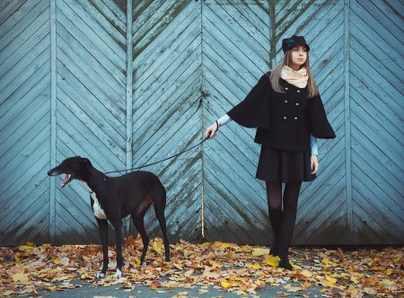 Young Attractive Girl Dressed Elegantly Walks With The Dog Greyh