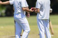 Cricket Ball Players